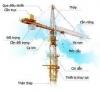 Cẩu Tháp Phoenix