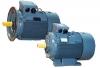 Động cơ điện att - rms & wy series